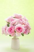Flower 179