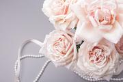 Flower 204
