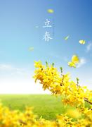 봄 001