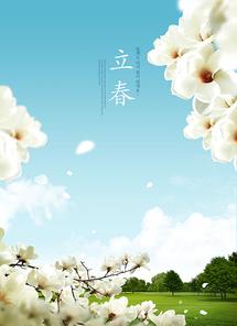 봄 010