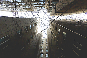건물 016