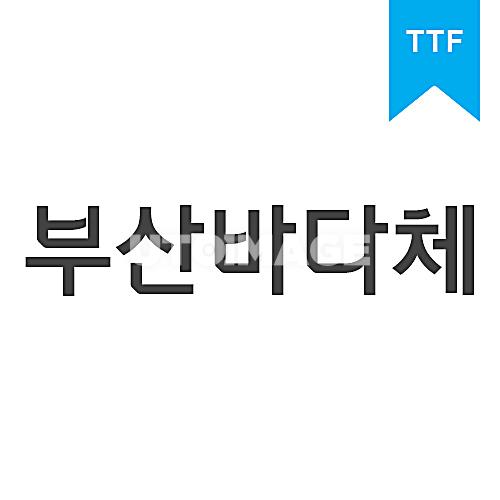 부산바다체TTF