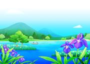 여름풍경 012