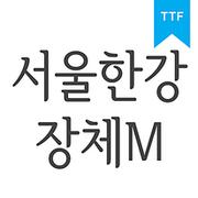 서울한강 장체 MTTF