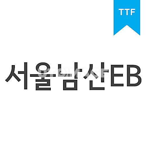 서울남산체 EBTTF