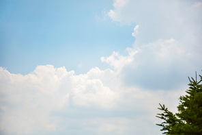 구름 024