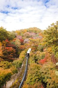가을풍경 105