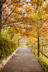 가을풍경 175