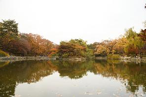 가을풍경 354