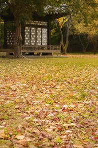 가을풍경 364
