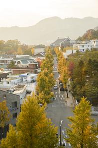 가을풍경 365