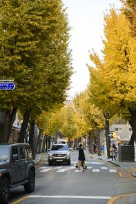 가을풍경 373