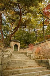 가을풍경 374