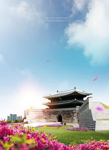 벚꽃여행 002