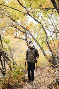 가을산행 286
