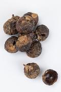제로웨이스트 - 친환경 세제 소프넛 누끼