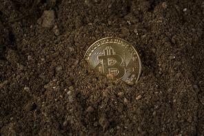 비트코인 - 흙 속에 파묻혀있는 비트코인