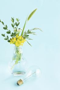 꽃과 식물 - 들꽃과 나뭇잎이 꽂혀있는 전구