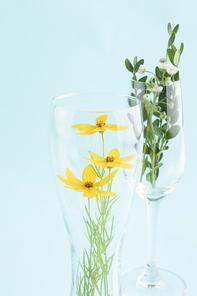 꽃과 식물 - 샴페인잔과 맥주잔 안에 있는 들꽃과 나뭇잎