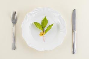 꽃과 식물 - 흰 접시 위에 놓여진 꽃과 나뭇잎 그리고 포크,나이프