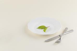 꽃과 식물 - 흰 접시 위에 놓여진 나뭇잎 그리고 포크,나이프
