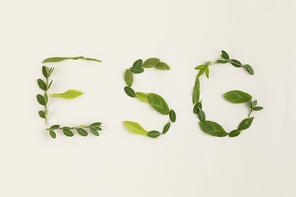 꽃과 식물 - 나뭇잎으로 적힌 ESG 글씨