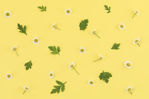 꽃과 식물 - 꽃과 나뭇잎 패턴 이미지