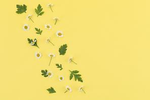 꽃과 식물 - 꽃과 나뭇잎 패턴 프레임