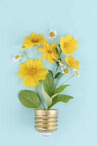 꽃과 식물 - 전구 모양을 하고 있는 꽃과 나뭇잎