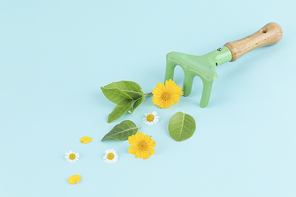 꽃과 식물 - 갈퀴 옆에 놓여진 꽃과 나뭇잎