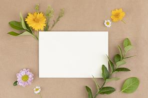 꽃과 식물 - 꽃과 나뭇잎이 놓인 엽서 프레임