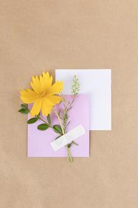 꽃과 식물 - 메모지 위에 놓여진 꽃과 나뭇잎