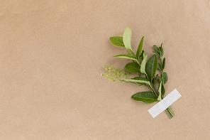꽃과 식물 - 마스킹 테이프로 붙여진 나뭇잎