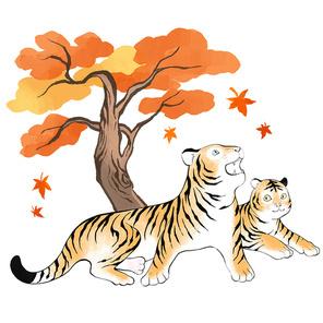 단풍나무가 있는 가을 숲속에서 장난치고 있는 호랑이 남매 이미지 일러스트