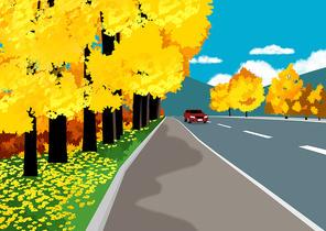 국도 드라이브중인 자동차와 은행나무가 있는 가로수길 풍경 이미지 일러스트