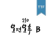 210 오전오후 TTF B