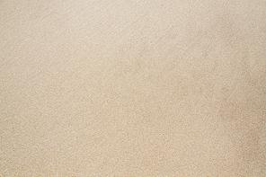 코스모스와 벼가 익은 들판, 가을풍경