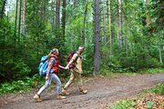 Couple of tourists walking along forest path on sumemr day
