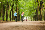 Rear view of young couple in activewear moving on bicycles and chatting on summer day in park with humans walking in front of them