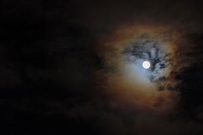 남산의 야경