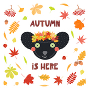 Hand drawn vector illustration of a cute indri lemur in leaves wreath, with quote Autumn is here. Isolated objects on white background. Scandinavian style flat design. Concept for children print.