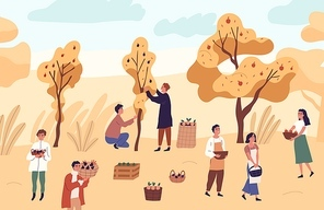 Group of farmer people picking seasonal fruits from trees at garden vector flat illustration. Man and woman at orchard with apples, oranges and plums. Agricultural workers with autumn harvest.