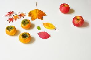 가을&과일