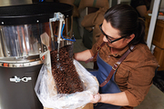 Man putting freshly roasted coffee beans into sack