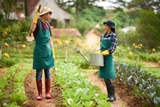 Young Asian workers wearing gumboots and aprons chatting with each other while taking short break from exhausting work at vegetable garden, blurred background