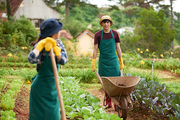 Unrecognizable young woman wearing bucket hat and apron leaning on hoe and looking at her male colleague driving empty wheelbarrow, spacious vegetable garden on background