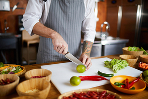 Mid section portrait of unrecognizable chef cutting vegetables while cooking spicy dish in restaurant, copy space