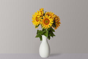 bouquet of yellow sunflowers in white vase, on grey