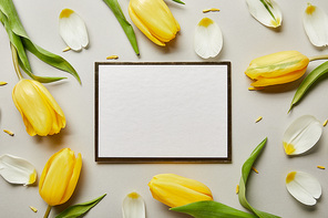 top view of white blank card with yellow tulips isolated on grey