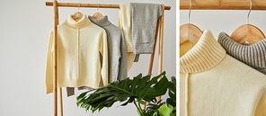 collage of beige and grey knitted soft sweaters and pants hanging on wooden hangers near green plant isolated on white
